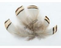 Перо декоративное Белоснежка № 16 в комплекте: 5 шт. размер 5-7 см.