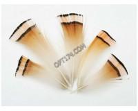 Перо декоративное Белоснежка № 18 в комплекте: 5 шт. размер 5-6 см.