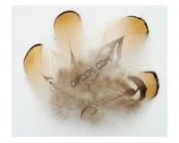 Перо декоративное Белоснежка № 20 в комплекте: 5 шт. размер 5-7 см.