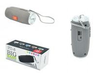 Акустическая система mini MP3 - FD-3 3.0Вт Bluetooth, MP3, FM, microSD, microUSB встроенный аккумулятор 3.7V/500 мА размер 13 х 5.5 см, цветная