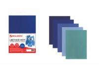 Цветной фетр для творчества BRAUBERG 660641 количество в наборе: 5 листов, количество цветов: 5 цветов (оттенки синего), размер 210х297 мм. толщина 2 мм