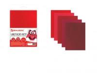 Цветной фетр для творчества BRAUBERG 660642 количество в наборе: 5 листов, количество цветов: 5 цветов (оттенки красного), размер 210х297 мм. толщина 2 мм