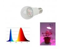 Светильник FITO светодиодная лампа для рассады Эра FITO-12W-RB-E27-K 11 16, 5 Ra90, E27, LED 2385, IP20, угол половинной яркости 120 гр, красно-синий спектр