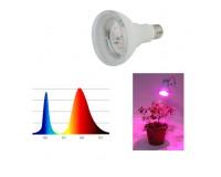 Светильник FITO светодиодная лампа для рассады Эра FITO-16W-RB-E27-K 16 24 E27, LED 2385, IP20, угол половинной яркости 120 гр, красно-синий спектр