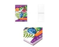 Альбом для рисования BRAUBERG 110987 Скетчбук Debut 50 стр., обложка - мелованный картон, спираль, формат A5(145х205мм), плотность бумаги 100 г/м2, жесткая подложка